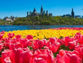 khí hậu, đất nước, con người Canada